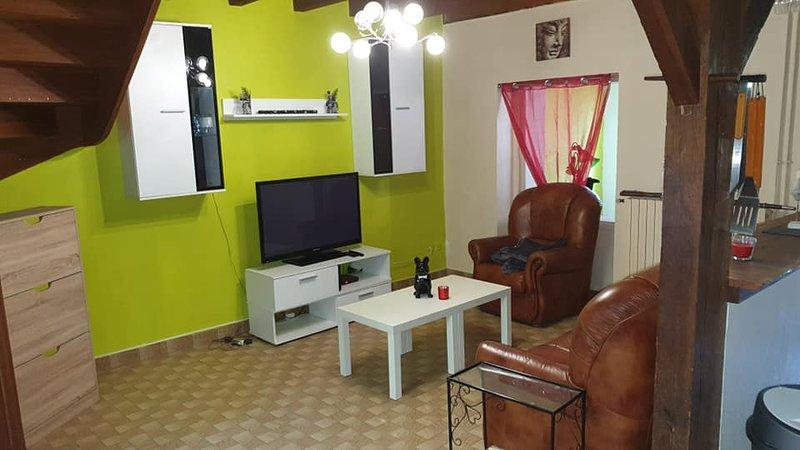 Gite Le petit Bonheur, holiday rental in Brignac-la-Plaine
