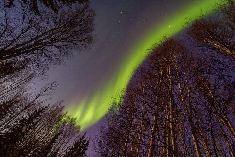 Time your trip right to enjoy an unforgettable sight of the Northern Lights!