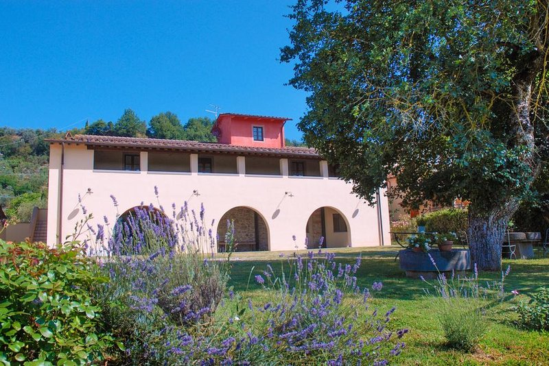 Apartment with mountain view, holiday rental in Cicogna