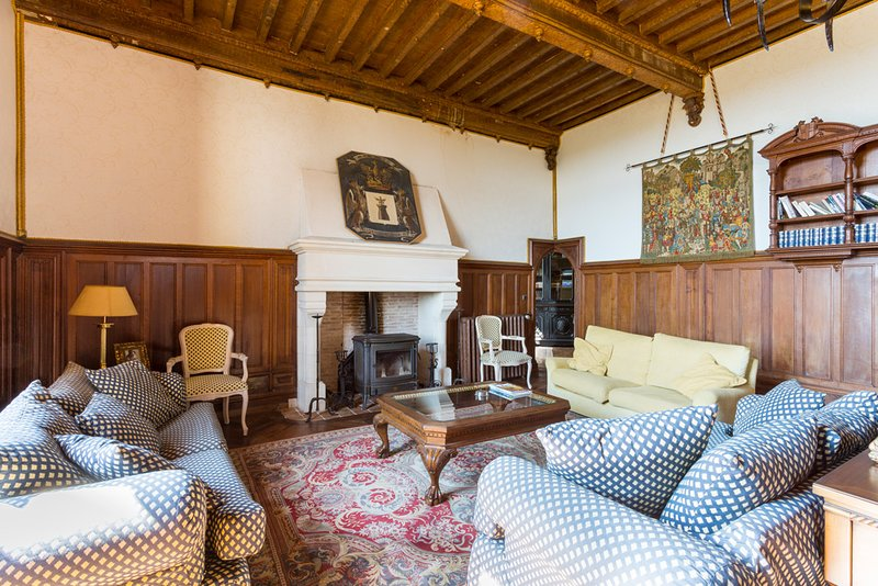Le Moulinaud Chateau Sleeps 12 with Pool - 5049617, location de vacances à Annesse-et-Beaulieu