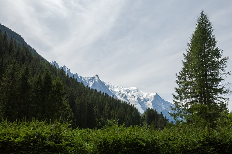 Majestic Mont Blanc views from the property