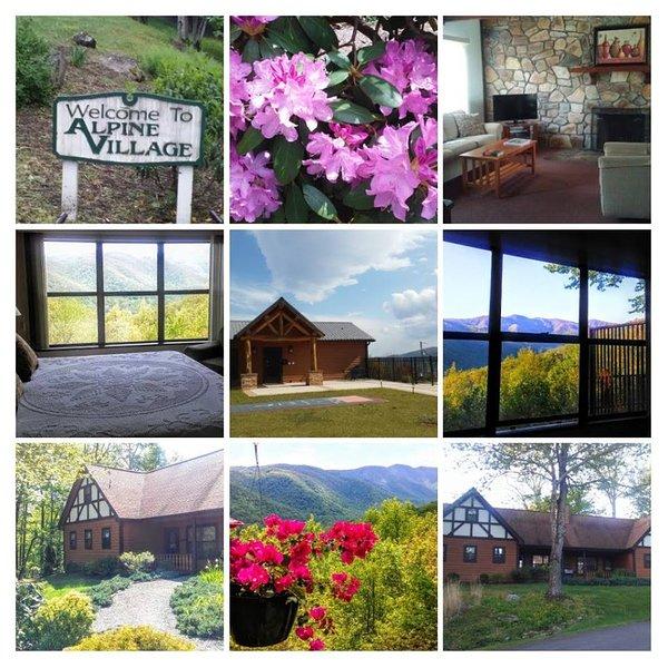 Resort at Alpine Village, aluguéis de temporada em Burnsville