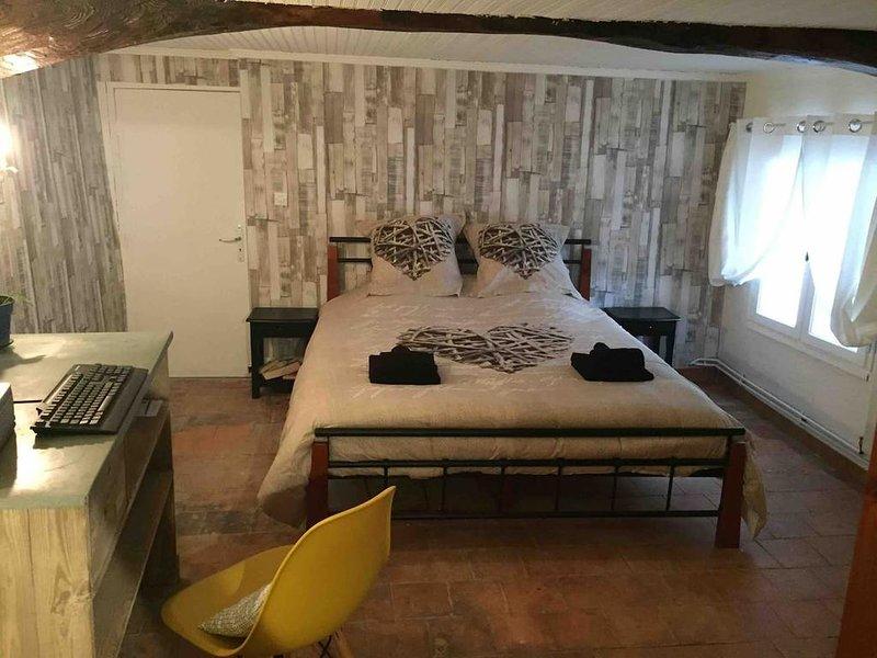 Amazing house with terrace & Wifi, location de vacances à Saint Andre de Valborgne