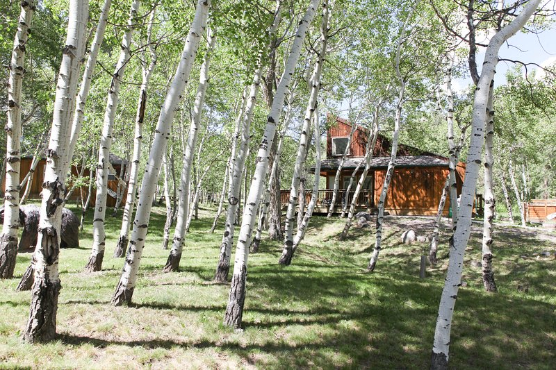 Mt. Antero Chalet at Creekside Chalets, holiday rental in Monarch