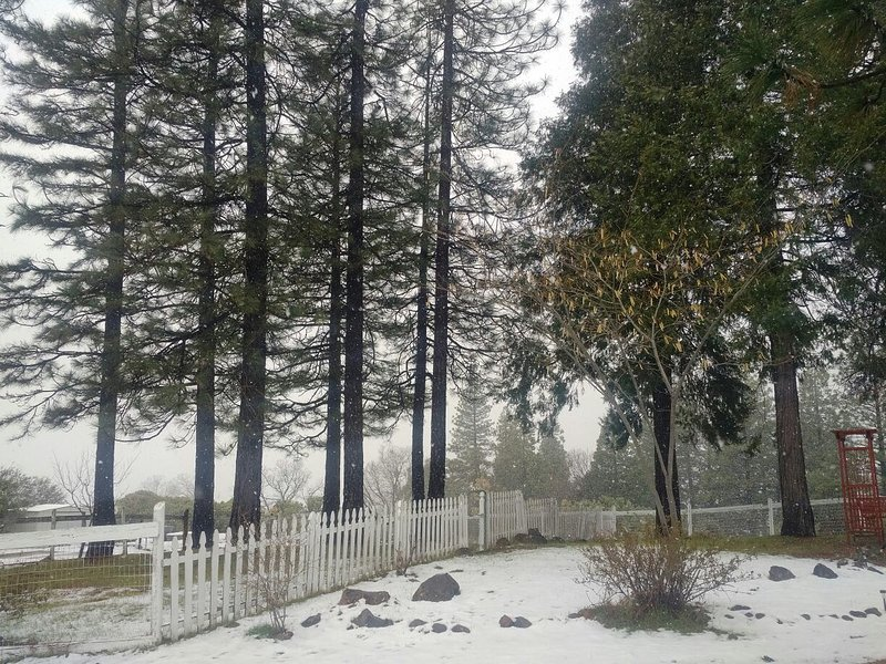 Beautiful Villa In the Middle of 5 ACRES, holiday rental in Pollock Pines