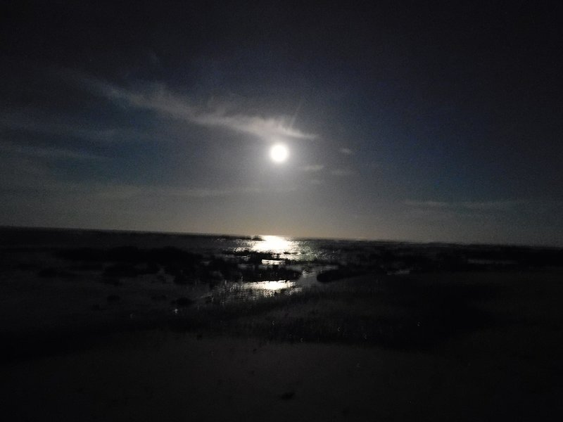 Our area is safe day or night for beach strolls :)