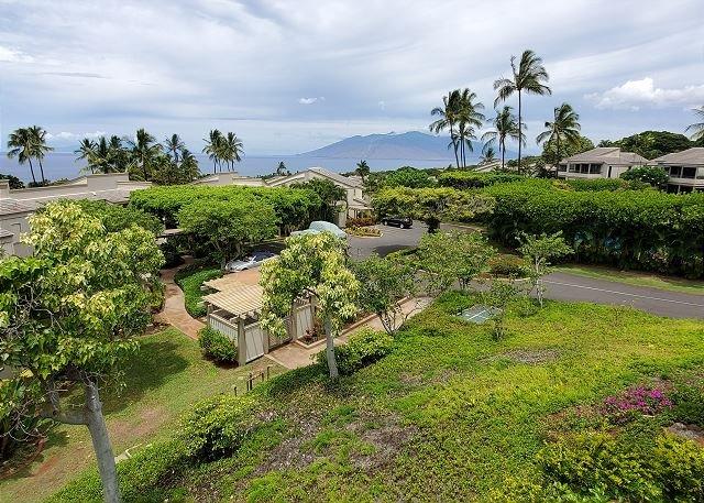 Maui Kamaole A202