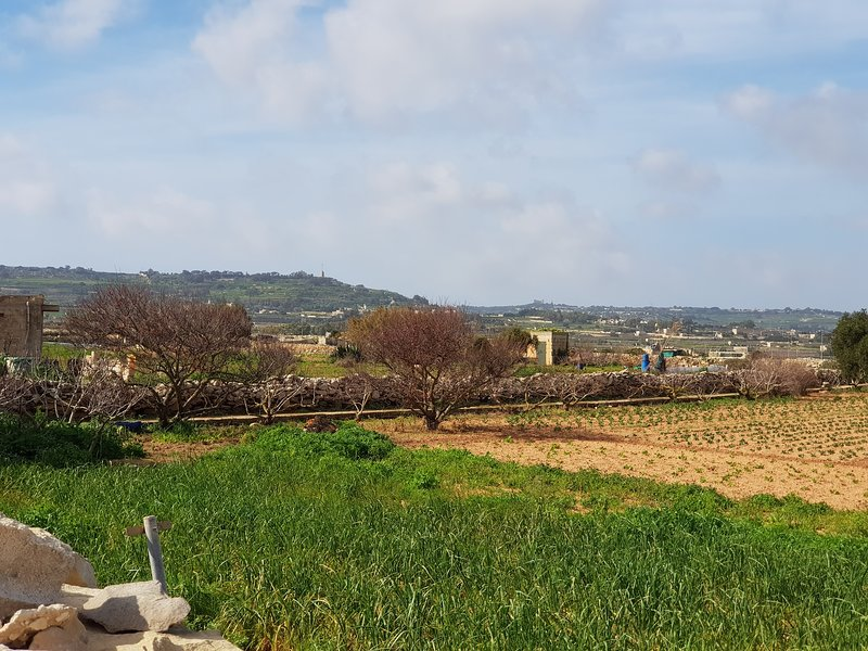 Agro-Tourism Auberge de Provence, holiday rental in Qrendi