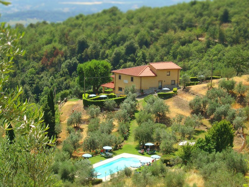 Villa with swimming pool & apts, peaceful, stunning view! Exclusive use, holiday rental in Loro Ciuffenna