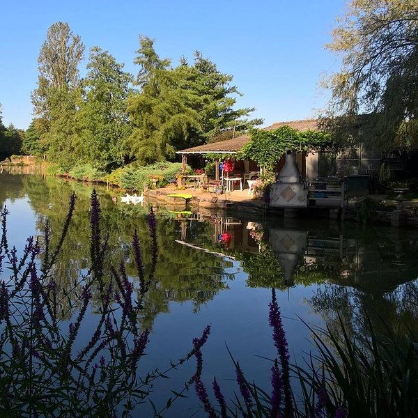 Chalet de carpiste et étang privé - Le PAL 12 Km, location de vacances à Thiel-sur-Acolin