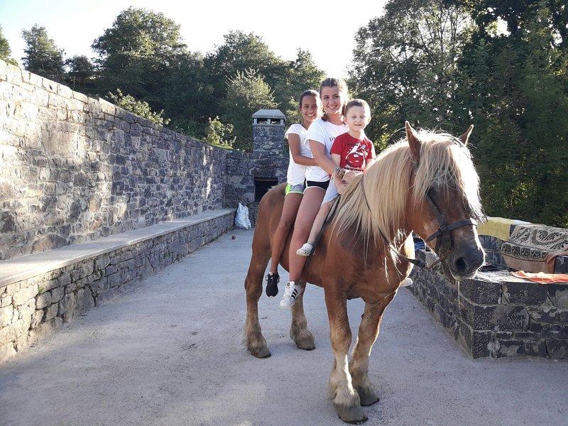 Casa rural íntegra El Berañizu 10 personas, paseos a caballo, location de vacances à Sobrefoz