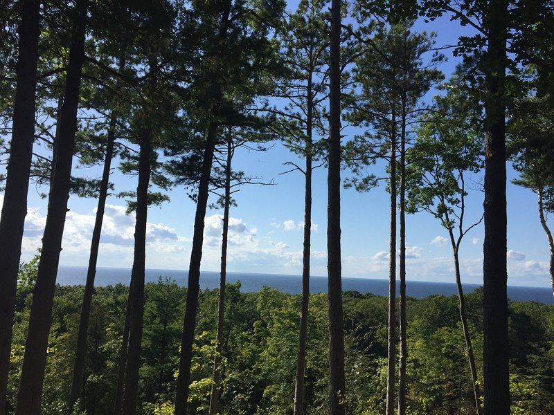 Expansive views of the water and woods.