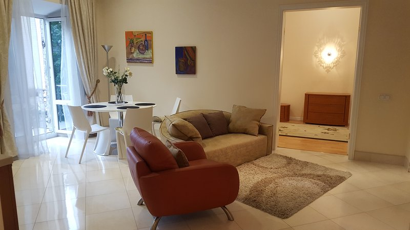 Ivana Franka St, spacious apartment next to St Vladimir Cathedral, vacation rental in Irpin