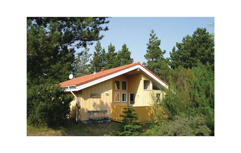 Nice home in Skagen w/ Sauna, WiFi and 4 Bedrooms, holiday rental in Hulsig