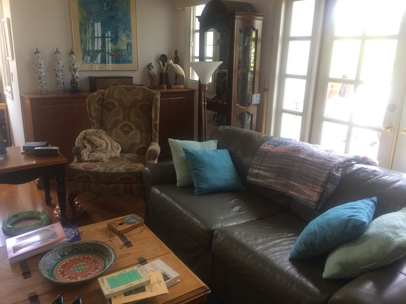 A living room rich with books, musical instruments, and dining room table for- privately for you!