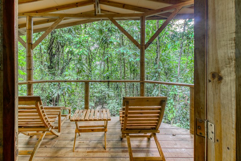 Eco-friendly rental in the jungle w/outdoor seating overlooking the nature! – semesterbostad i San Vito