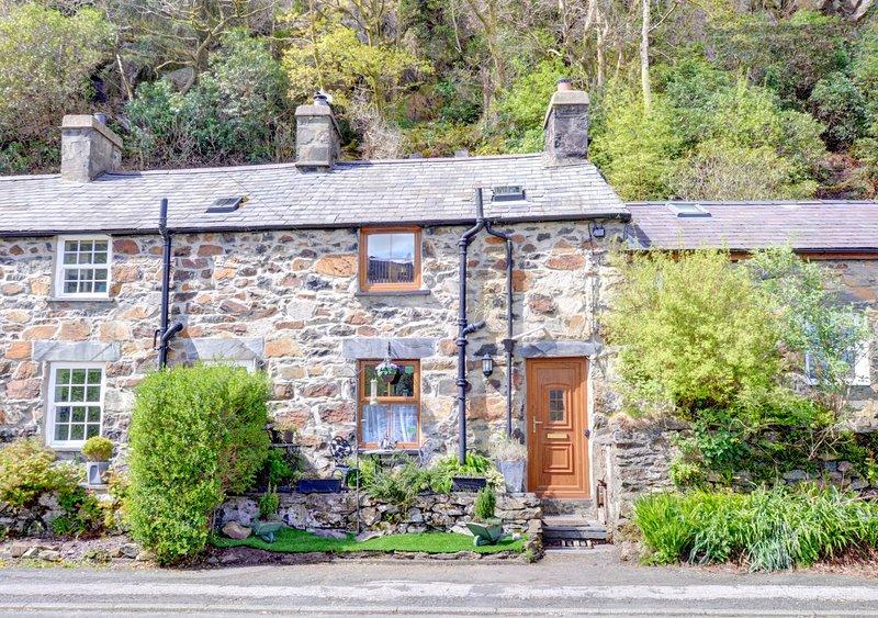 Mynydd Annedd Cottage, alquiler vacacional en Beddgelert