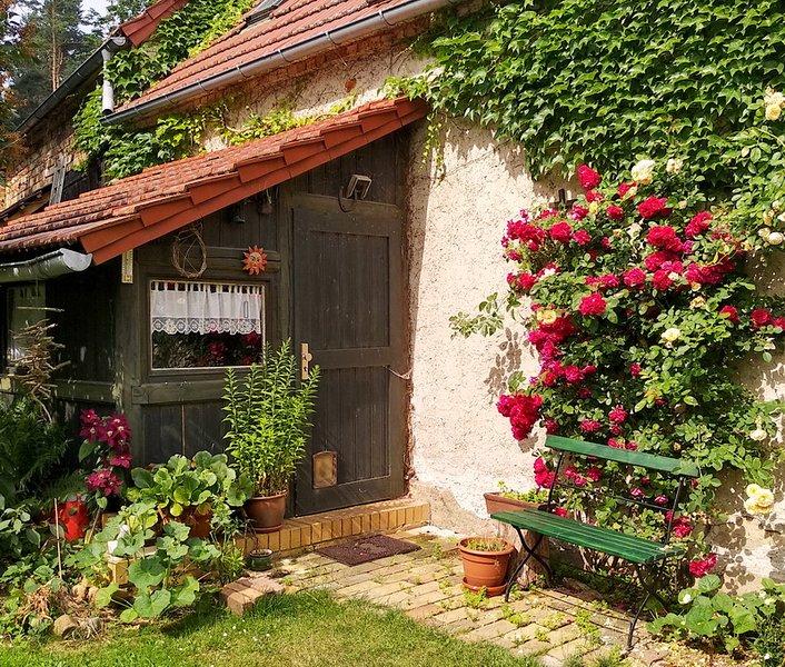 Ferienwohnung Hachemühle - Dübener Heide, holiday rental in Trossin