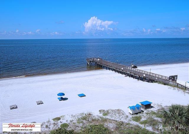 Beach Palms Condominium 507, vacation rental in Indian Shores