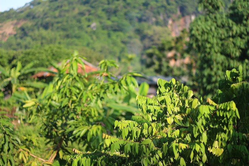 Muong Lo Corner, vacation rental in Yen Bai Province