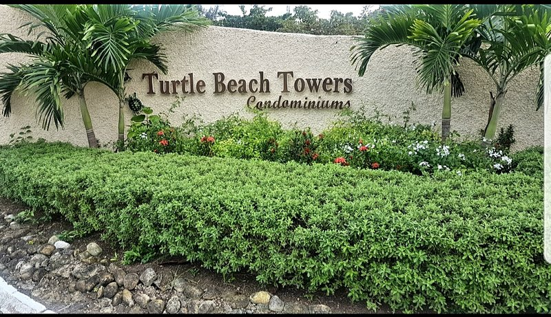 41D Turtle BeachTowers, holiday rental in Tower Isle