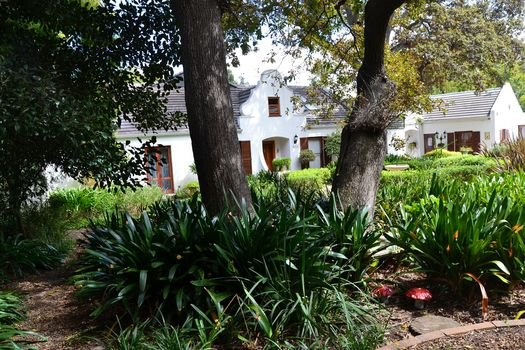 Family Home in the Cape Winelands, holiday rental in Somerset West