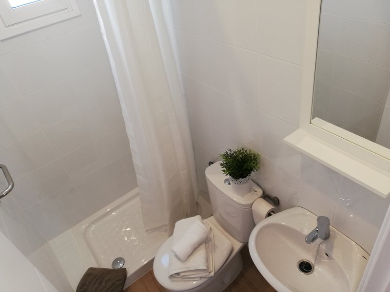 Toilet with shower (Ground floor)