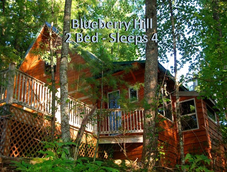 Minutes from Nantahala Lake - 2 bedroom log cabin