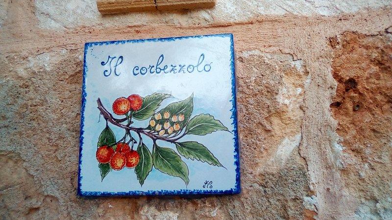 Il Corbezzolo red appartament, holiday rental in Castelluzzo