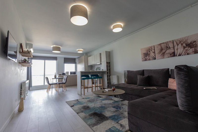 Ares ApartHotel - Apt 402, Cluj-Napoca, vacation rental in Cluj County