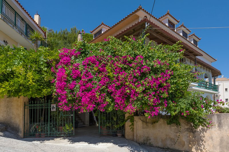 Vallia's Apartments – semesterbostad i Kalliteros