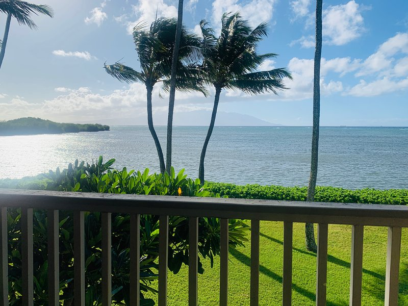 From the Lanai in the Morning.