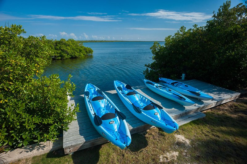 The owner offers kayaks for guests to use during their stay.