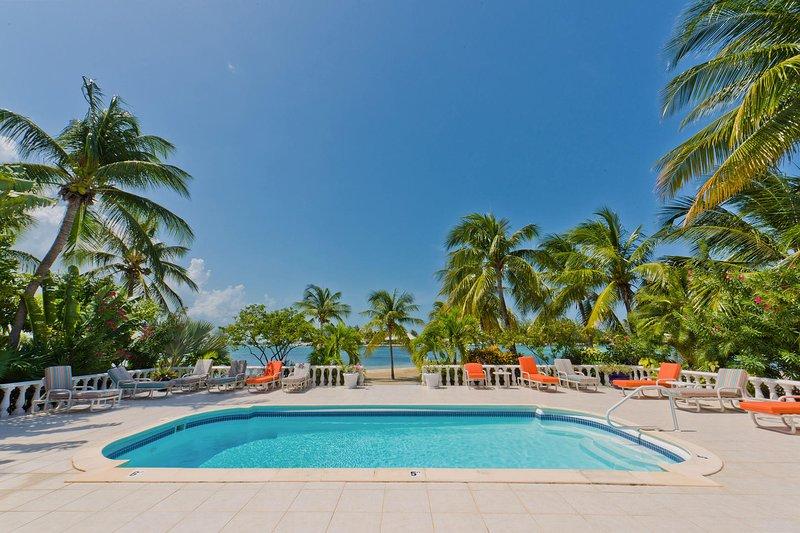 Tome sus agradables tonos y pase un día en la piscina privada.