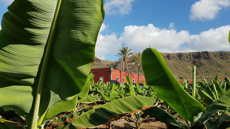 Casa del Mar. Historical House in a Banana Plantation by the Sea., holiday rental in Banaderos