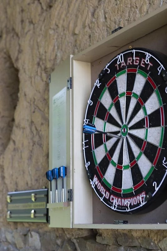 Darts, bicycles, and outdoor games provided for your enjoyment.