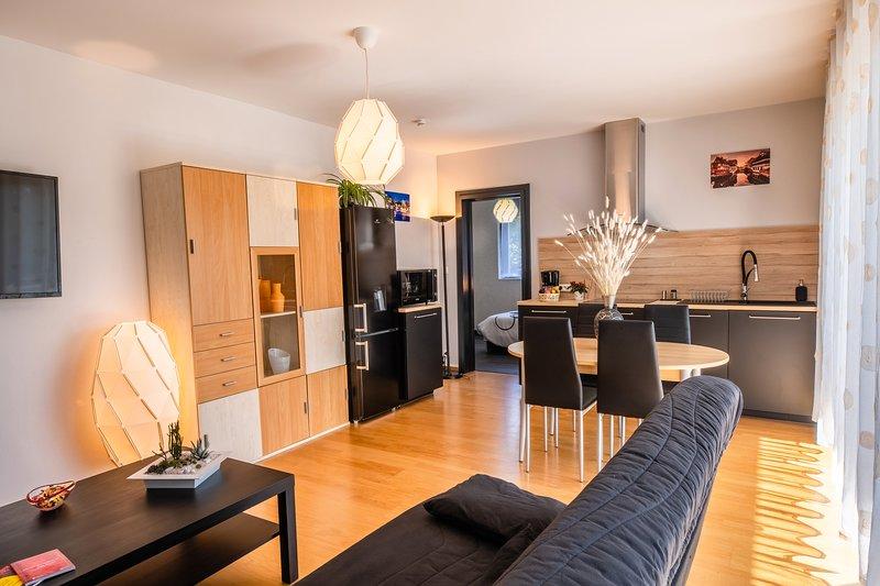 Appartement de Standing, calme, neuf, avec terrasse & forêt proches commodités, vacation rental in Lingolsheim