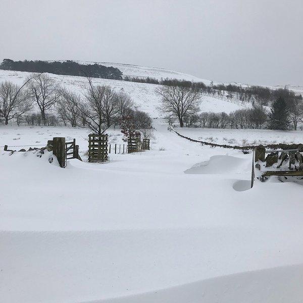 La Bestia del Este nos dejó nevados en ......