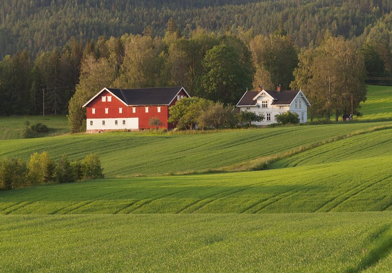 Telemark Guesthouse - great location for families!, holiday rental in Skien