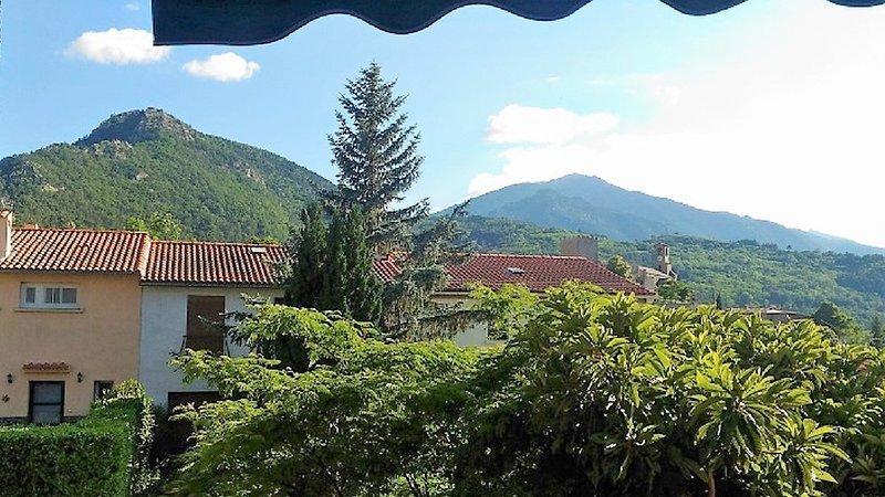 AU PIED DU CANIGOU - T1Bis La Pena 4 étoiles, vacation rental in Villefranche-de-Conflent
