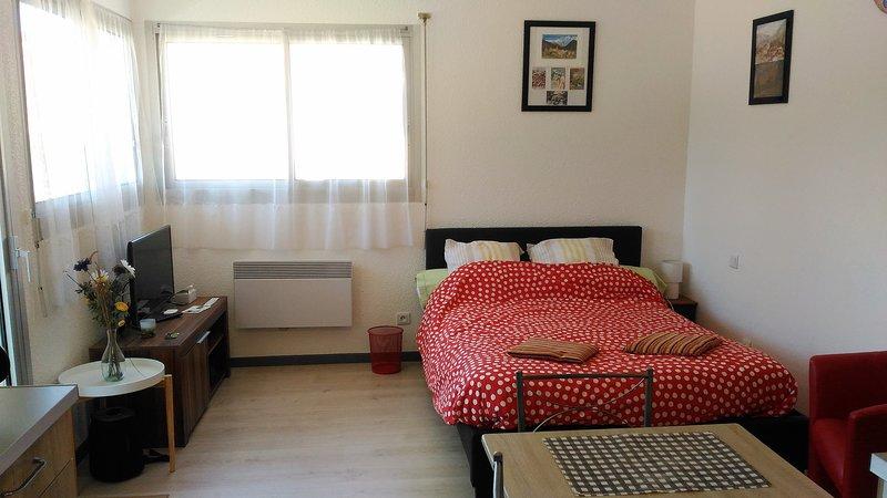 AU PIED DU CANIGOU - T1 La Catalane 4 étoiles, vacation rental in Villefranche-de-Conflent