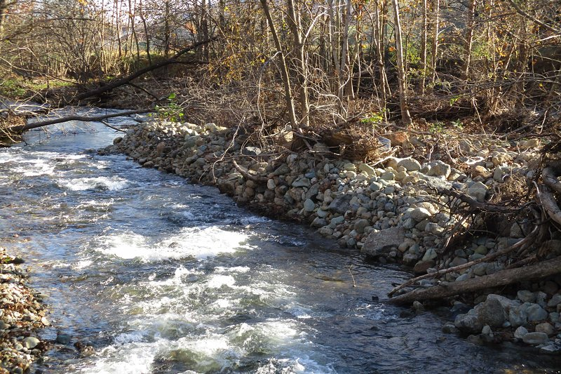 Enjoy scenic walks along the Conway River.