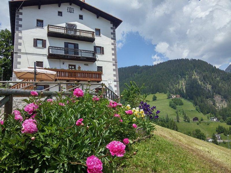 Cesa da Riz - Appartamento Pelmo 4 persone, vacation rental in Province of Belluno