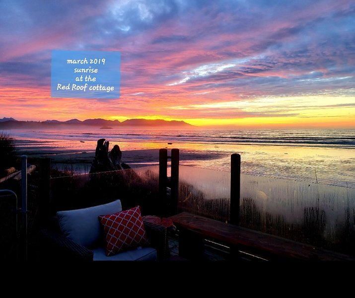 These 30 AMAZING photos were taken from the Red Roof Cottage actual property!!!, aluguéis de temporada em Tofino