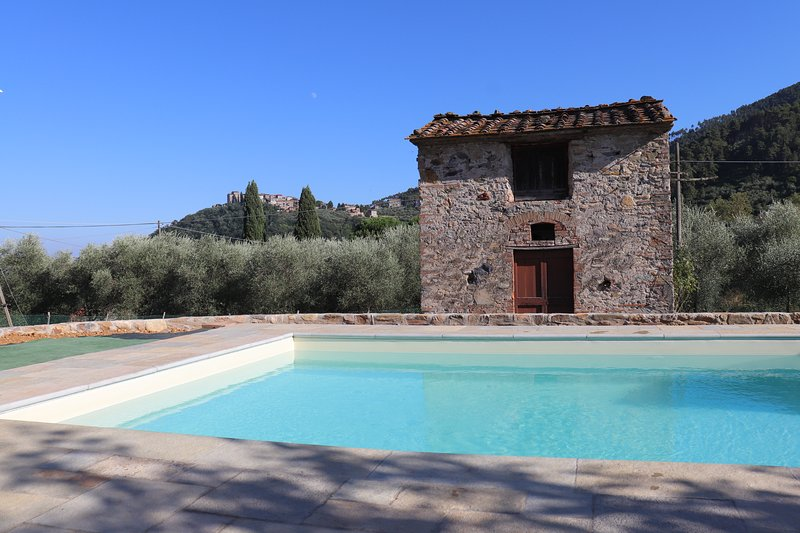 Colle Farmhouse peaceful village apartment with pool, holiday rental in Lucca