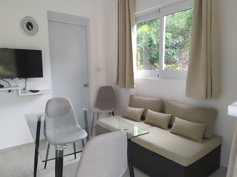 White swan, holiday rental in Luperon
