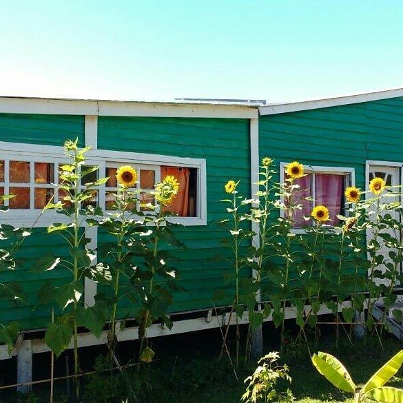 Arachania hostel, casa vacanza a Rocha