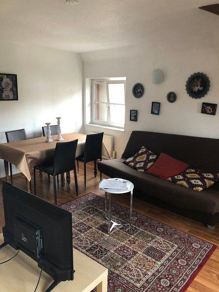Appartement centre de Strasbourg, holiday rental in Plobsheim