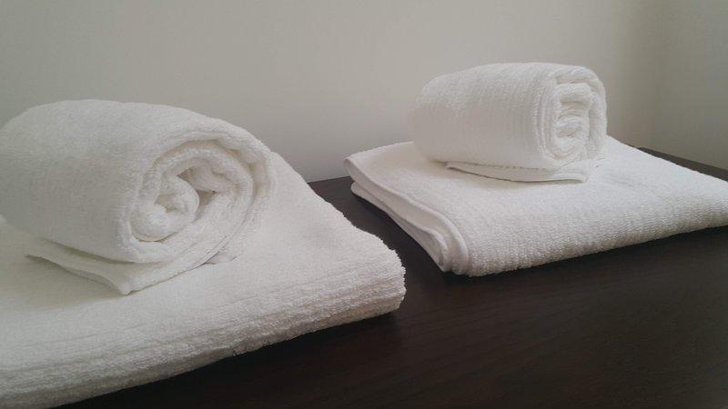 Sweet Oporto Apartments, holiday rental in Bomfim