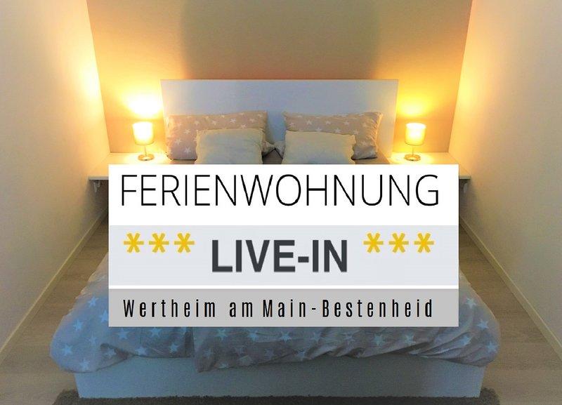 Apartment *** LIVE-IN *** Wertheim am Main, holiday rental in Obernburg